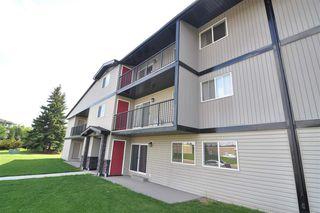 Photo 22: 9A 2808 116 Street in Edmonton: Zone 16 Condo for sale : MLS®# E4165735