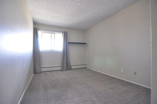 Photo 19: 9A 2808 116 Street in Edmonton: Zone 16 Condo for sale : MLS®# E4165735