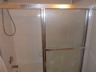 Photo 11: 309 11620 9A Avenue in Edmonton: Zone 16 Condo for sale : MLS®# E4172434
