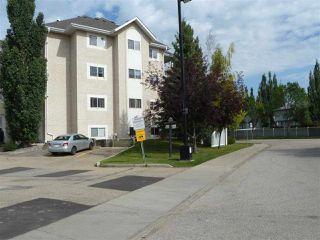 Photo 3: 309 11620 9A Avenue in Edmonton: Zone 16 Condo for sale : MLS®# E4172434