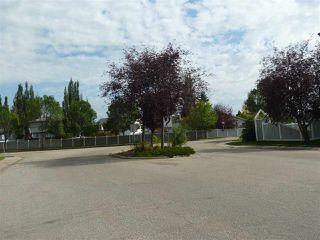 Photo 18: 309 11620 9A Avenue in Edmonton: Zone 16 Condo for sale : MLS®# E4172434