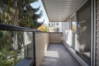 """Photo 14: 12 3250 W 4TH Avenue in Vancouver: Kitsilano Condo for sale in """"3250"""" (Vancouver West)  : MLS®# R2415450"""