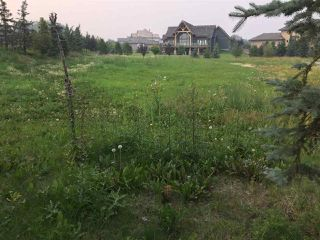 Photo 3: 1 PINNACLE Way: Rural Sturgeon County Rural Land/Vacant Lot for sale : MLS®# E4183679