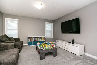 Photo 15: 3622 CHERRY Link in Edmonton: Zone 53 House for sale : MLS®# E4211781