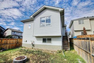 Photo 43: 105 LUXSTONE Place SW: Airdrie Detached for sale : MLS®# A1029753