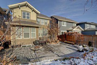 Photo 27: 428 Mahogany Boulevard SE in Calgary: Mahogany Detached for sale : MLS®# A1048380