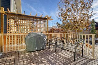 Photo 29: 428 Mahogany Boulevard SE in Calgary: Mahogany Detached for sale : MLS®# A1048380