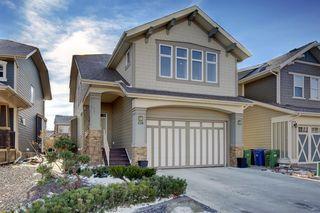 Photo 1: 428 Mahogany Boulevard SE in Calgary: Mahogany Detached for sale : MLS®# A1048380