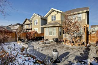 Photo 28: 428 Mahogany Boulevard SE in Calgary: Mahogany Detached for sale : MLS®# A1048380