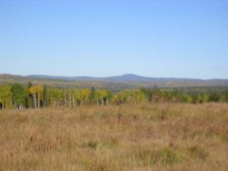 Photo 9: : Edson Rural Land for sale ()  : MLS®# 22122