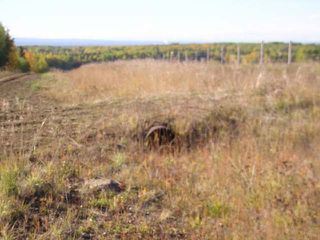 Photo 8: : Edson Rural Land for sale ()  : MLS®# 22122