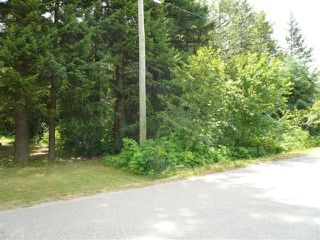Main Photo: 4102 Butters Road in Scotch Creek: North-Shore, Scotch Creek Land Only for sale (Shuswap)  : MLS®# 9197386