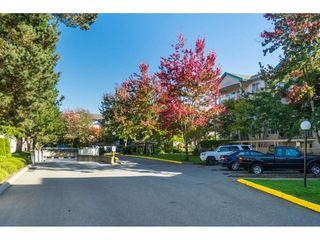 "Photo 17: 205 20443 53RD Avenue in Langley: Langley City Condo for sale in ""Countryside Estates"" : MLS®# R2408980"