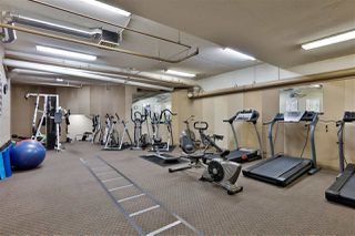 """Photo 19: 306 20453 53 Avenue in Langley: Langley City Condo for sale in """"Countryside Estates"""" : MLS®# R2435705"""
