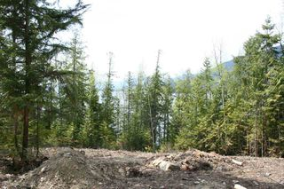 Photo 6: 4533 Rea Road in Eagle Bay: Waterfront Lot Vacant Land for sale : MLS®# 10058088