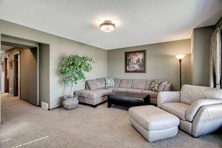 Photo 22: 96 CRANRIDGE Crescent SE in Calgary: Cranston Detached for sale : MLS®# A1032228