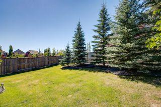 Photo 44: 96 CRANRIDGE Crescent SE in Calgary: Cranston Detached for sale : MLS®# A1032228