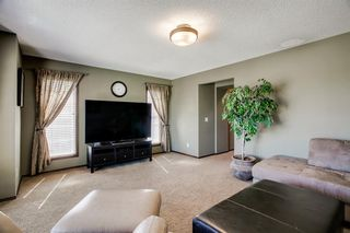 Photo 23: 96 CRANRIDGE Crescent SE in Calgary: Cranston Detached for sale : MLS®# A1032228