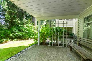 """Photo 20: 114 10584 153 Street in Surrey: Guildford Townhouse for sale in """"Glenwood Village"""" (North Surrey)  : MLS®# R2390526"""
