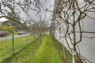 Photo 27: 4383 Majestic Dr in VICTORIA: SE Gordon Head Single Family Detached for sale (Saanich East)  : MLS®# 837692