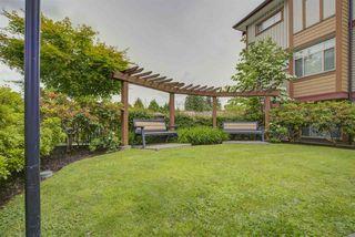 "Photo 20: 216 12565 190A Street in Pitt Meadows: Mid Meadows Condo for sale in ""CEDAR DOWNS"" : MLS®# R2466300"
