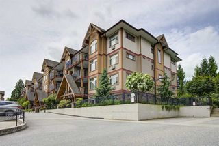 "Main Photo: 216 12565 190A Street in Pitt Meadows: Mid Meadows Condo for sale in ""CEDAR DOWNS"" : MLS®# R2466300"