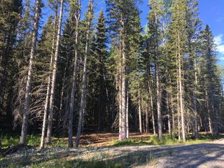 Main Photo: 50071 TWP RD 234 Other: Bragg Creek Land for sale : MLS®# A1022502