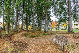 Photo 25: 28 5867 129 Street in Surrey: Panorama Ridge Townhouse for sale : MLS®# R2515216