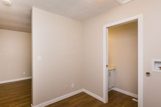 Photo 7: 3619 43 Avenue in Edmonton: Zone 29 House for sale : MLS®# E4166493