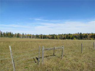 Photo 16: TWP Rd 310: Rural Mountain View County Land for sale : MLS®# C4292828