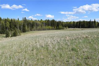 Photo 12: TWP Rd 310: Rural Mountain View County Land for sale : MLS®# C4292828