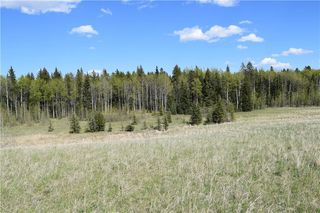 Photo 13: TWP Rd 310: Rural Mountain View County Land for sale : MLS®# C4292828