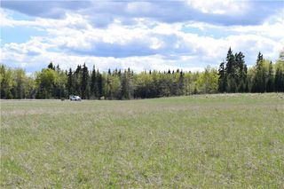 Photo 7: TWP Rd 310: Rural Mountain View County Land for sale : MLS®# C4292828