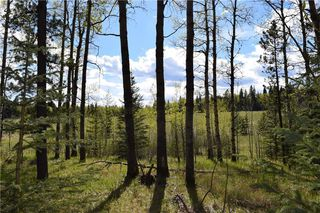 Photo 18: TWP Rd 310: Rural Mountain View County Land for sale : MLS®# C4292828
