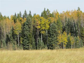 Photo 21: TWP Rd 310: Rural Mountain View County Land for sale : MLS®# C4292828