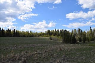 Photo 8: TWP Rd 310: Rural Mountain View County Land for sale : MLS®# C4292828