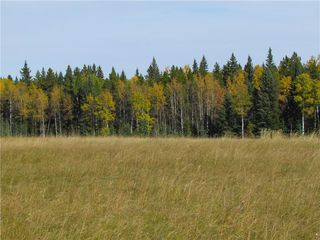 Photo 24: TWP Rd 310: Rural Mountain View County Land for sale : MLS®# C4292828