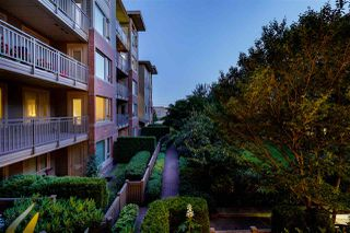 "Photo 29: 227 119 W 22ND Street in North Vancouver: Central Lonsdale Condo for sale in ""ANDERSON WALK"" : MLS®# R2487523"