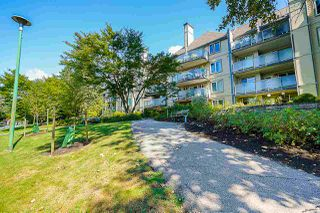 """Photo 38: 421 6707 SOUTHPOINT Drive in Burnaby: South Slope Condo for sale in """"MISSION WOODS"""" (Burnaby South)  : MLS®# R2514266"""