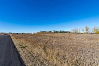 Photo 18: 16066 261 Avenue E: Rural Foothills County Land for sale : MLS®# C4277926