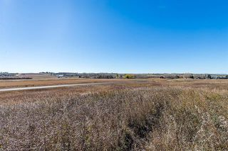Photo 13: 16066 261 Avenue E: Rural Foothills County Land for sale : MLS®# C4277926