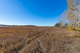 Photo 19: 16066 261 Avenue E: Rural Foothills County Land for sale : MLS®# C4277926