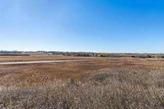 Photo 14: 16066 261 Avenue E: Rural Foothills County Land for sale : MLS®# C4277926