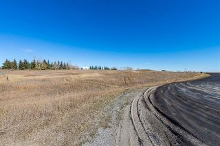 Photo 21: 16066 261 Avenue E: Rural Foothills County Land for sale : MLS®# C4277926