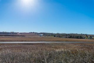 Photo 7: 16066 261 Avenue E: Rural Foothills County Land for sale : MLS®# C4277926