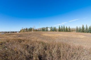 Photo 5: 16066 261 Avenue E: Rural Foothills County Land for sale : MLS®# C4277926