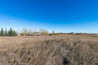 Photo 10: 16066 261 Avenue E: Rural Foothills County Land for sale : MLS®# C4277926