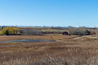 Photo 25: 16066 261 Avenue E: Rural Foothills County Land for sale : MLS®# C4277926