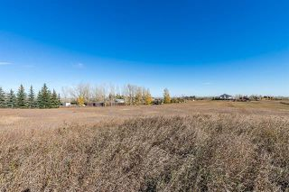 Photo 4: 16066 261 Avenue E: Rural Foothills County Land for sale : MLS®# C4277926