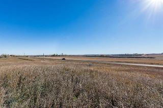 Photo 16: 16066 261 Avenue E: Rural Foothills County Land for sale : MLS®# C4277926